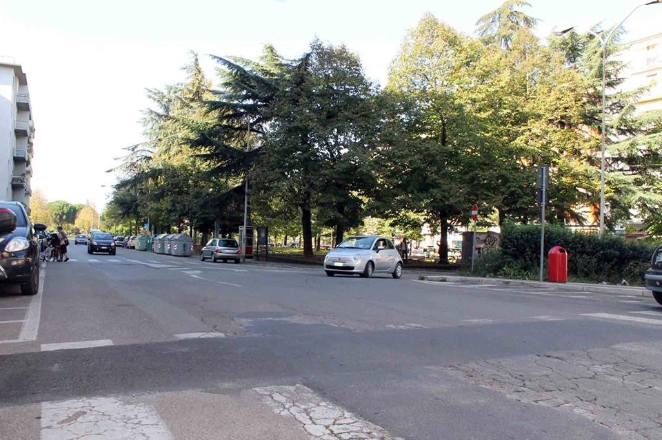 Ufficio Manutenzione Verde Arezzo : Annunci immobiliari affitto capannoni arezzo provincia